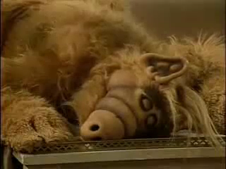 Alf - Episode 1